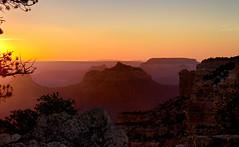 Sunset at Cape Royal, Grand Canyon AZ (swissuki) Tags: grandcanyon northrim grand canyon national park