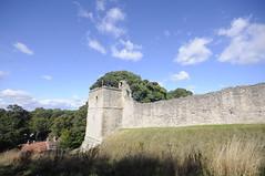_DSC6808 Pickering castle (petelovespurple) Tags: pickeringcastle pickering ryedale northyorkshire nikon yorkshire castle ruins englishheritage