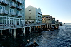 Pacific Grove and Monterey (simplethrill) Tags: pacificgrove monterey california