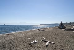 2018-09-26_13-54-43 September Beach (canavart) Tags: beach esquimaltlagoon victoria vancouverisland driftwood britishcolumbia bc