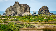 Cutter Rock and Ninepin Rock (Stefan Marks) Tags: cutterrock ninepinrock tasmansea building island lighthouse nature ocean outdoor scenery aucklandwaitakere northisland newzealand nzl