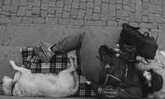 #picture #picoftheday #photooftheday #photographer #photo #instagram #blackandwhitephoto #blackandwhite #blackandwhitephotography #nikon#nikontop #photograpy #photographylovers#streetphotography #naturephotography #naturelovers #portrait #people #portrait (dandrugo66) Tags: photooftheday photograpy portraitvision roma city naturephotography photo instagram streetphotography portrait people picture nikon nikontop picoftheday blackandwhite photographylovers citylife blackandwhitephoto cityscape photographer blackandwhitephotography naturelovers
