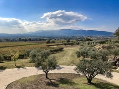 Perticaia view (@WineAlchemy1) Tags: perticaia landscape umbria italy montefalcosagrantino winery vineyard vines olive trees farm wine docg doc mountains apennines autumn harvest vendemmia casale appennino