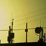 Antennas thumbnail