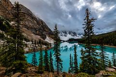 Turquoise heaven!! (Doreen Bequary) Tags: banffnationalpark albertacanada lakemoraine canadianrockies canada banff d850 glacierwater mountain nikon1424mmf28 l landscape lake tree sky rock