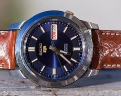 Seiko 5 blue (hz536n/George Thomas) Tags: 2018 canon canon5d ef100mmf28lmacrois michigan ogemawcounty prescott seiko blue bokeh copyright fall macro upnorth watch automatic seiko5 7s2gc
