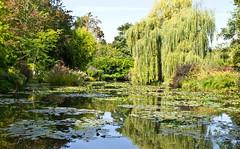 Teich / Pond (schreibtnix on 'n off) Tags: reisen travelling frankreich france giverny claudemonet garten garden spiegelung reflections teich pond olympuse5 schreibtnix