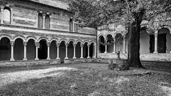 530201809cPIONA-19-Modifica (GIALLO1963) Tags: europe italy lombardy piona abbaziadipiona lario lake monastry architecture convento friars art culture canoneos6d zeiss ze distagont225 ngc