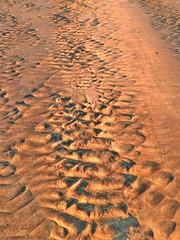 Sandy patterns close up IV (elphweb) Tags: hdr highdynamicrange nsw australia seaside water beach sand sandy patterns sandpatterns texture textures tide tidal lowtide coast coastal