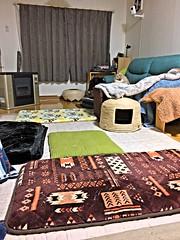 Hiding Norio (sjrankin) Tags: 4october2018 edited animal cat norio hdr clutter livingroom couch mat patterns floor kitahiroshima hokkaido japan