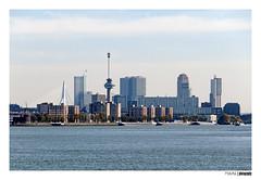Rotterdam skyline (PIVAMA|photography) Tags: rotterdam skyline erasmus bridge brug euromast touristic attractions attraction