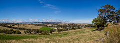 Yankalilla (Anthony Kernich Photo) Tags: adelaide southaustralia sa australia fleurieu fleurieupeninsula landscape hill view outdoor afternoon day panorama pano panoramic olympus olympusem10 olympusomd microfourthirds lumix sky travel sightseeing seascape yankalilla country town countryside