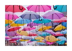 Arc-en-ciel (Photography Christophe.H) Tags: art artist artiste bzh exterieur reflex umbrella parapluie automne autumn féerique canon 50mm bretagne