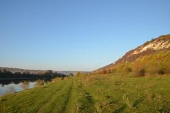 DSC_5453 (Sector2000) Tags: осень золотаяосень парк природа листья деревья automn выходной лес парки