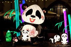 Panda and children lanterns (Sockenhummel) Tags: 2018 berlinleuchtet festivaloflights fol pandas pandabären bären bear laternen lanterns chineselanterns licht nacht night nikolaiviertel berlin fuji xt10