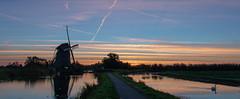 Rietveldse Molen Hazerswoude (DodaarsJan) Tags: windmill holland molen polder sunrise zonsopkomst swan knobbelzwaan