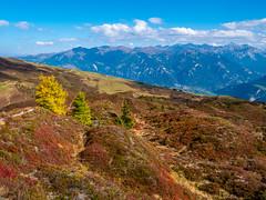 Glaser Grat (oonaolivia) Tags: glasergrat heinzerberg graubünden grisons schweiz switzerland landschaft landscape nature walking hiking herbst fall autumn