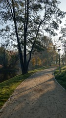 Spacerowo (klio2582) Tags: bytom park autumn october fall tree leaves pond lake island willowtree path alley shadows streetlamp