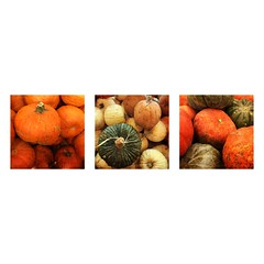 Pumpkins (jeanne.marie.) Tags: grocerystore produce autumn iphoneography orange colorful iphone7plus collage triptych patternsinnature pumpkins