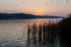 Stillness is the altar of Spirit (docwiththecamera) Tags: sunset sun evening sea color water archipelago autumn cloud sky peaceful serene