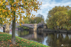 Autumn view... (Kerriemeister) Tags: york skeldergate bridge autumn trees river ouse nikond5300 reflection colourful