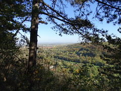 Fenster in Wald (Thomas230660) Tags: sonne herbst flora sony arnstadt wanderung landschaft landscape bäume thüringen trees blätter