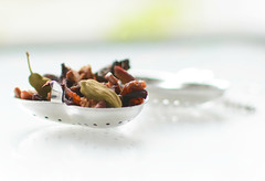 Herbal Tea infusion (rdavo58) Tags: intendedcontact macromonday hmm
