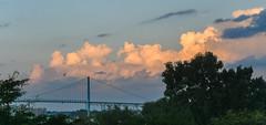 Fly Away ({Brinkervelt}) Tags: detroit michigan bridge clouds sky bird light sunlight