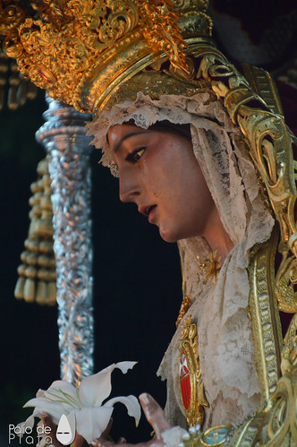 """Rosario Merced (6) • <a style=""""font-size:0.8em;"""" href=""""http://www.flickr.com/photos/135973094@N02/44961989312/"""" target=""""_blank"""">View on Flickr</a>"""