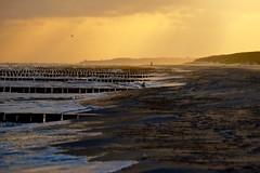 Ostsee bei Prerow (karstenzschache) Tags: ostsee perron dars prerow strand beach balticsea sonnenaufgang sunrice