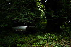 IMGP0045 (Mareindo87) Tags: urbex visite lieu exploration urbaine limoges limousin haute vienne france usine industrie porcelaine abandon perdu
