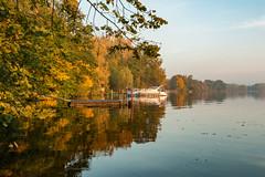 Herbst an der Havel (raschmichael) Tags: morgens niederneuendorf oberhavel