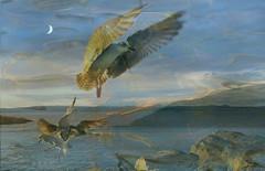 flight patterns (Edinburgh Nette ...) Tags: moon dusk seascapes isleofmull blend tripleexposure lochbuie sunsets herringgulls birds gulls ribbet