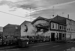 Dinosaurio (343/365) (Walimai.photo) Tags: black white blanco negro byn bw branco preto blanc noir labañeza león spain españa grafitti ojos eyes dinosaurio dinosaur lx5 lumix street calle