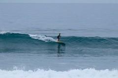 IMG_6247 (palbritton) Tags: surf surfing surfer singlefin longboard longboardsurfing surfcontest