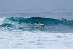 IMG_6277 (palbritton) Tags: surf surfing surfer singlefin longboard longboardsurfing surfcontest