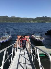 Steg mit aktuellen Booten (Angelreisen Hamburg) Tags: angelreisen angelurlaub angeln norwegen mittenursalzwasser hitratrondheim