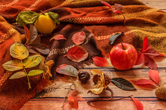 Autumn composition.Fall leaves, quince, apple, chestnut and warm scarf on wooden background (zaklina.miljkovic) Tags: apple autumn autumnmood background bright brown chestnut colorful composition dark decoration fall foliage golden happy leaf leaves natural orange pattern quince red rough rustic scarf season texture tranquil variety wooden yellow