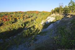 0017 (ontario photo connection) Tags: seatonlands seaton pickering cherrywood ontario canada fall autumn landscapes