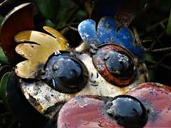 Two big eyes (ronmcbride66) Tags: dog gardenfurniture tintin bigeyes macro artwork metalwork coth