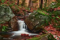Small Autumn Cascade (Bob the Birdman and All Around Nature Guy) Tags: smallautumncascade waterfall robertmiesner bobthebirdman fall autumn stream creek brook cascade landscape longexposure nature