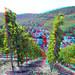 Trarbach Eifel 3D