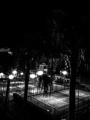 R0059177 (seba0815) Tags: ricohgrdiv monochrome grdiv bw blackwhite blackandwhite blanc noir hotel view streetphotography night dark light neonlights mood seba0815 mallorca palma