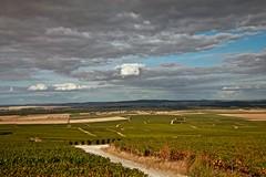 Flickr_Champagne_Verzy_Francia_09-2018_IMG_2072 (Roberto Bombardieri) Tags: francia france champagne vigne uva vino nuvole cielo