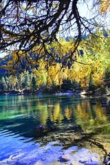 Palpuognasee im Herbst (barbarasteinemann) Tags: wonderful switzerland bergsee see automn herbst alpen swissalps schweiz graubünden palpuognasee preda