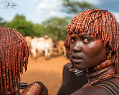 Hamer wifes at a bull jumping ceremony in the Omo Valley (Omo Valley, Ethiopia 2014) (Alex Stoen) Tags: 1dx africa african alexstoenphotography bulljumping canoneos1dx culture ef1635f28liiusm ethiopia geotagged hamer keske look natgeo nationalgeographicexpeditions omovalley pocketwizard tradition travel tribes ukulibula vacation offshoeflash surprise