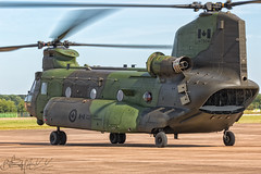 Royal Canadian Air Force Boeing-Vertol CH-147F Chinook 147304 (Ben Stanley Hall) Tags: royal canadian air force boeingvertol ch147f chinook 147304 cfbpetawawa ontontario canada forces cywa 1 wing 450 tactical helicopter squadron by to battle aviation royale canadienne rcaf arc chopper copter helo cargo airlift avgeek avporn fly flight flying airshow show demo demonstration camo raf fairford gloucestershire england europe eu gbr uk