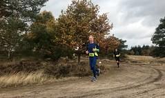 haarlerbergloop 10 km (61)