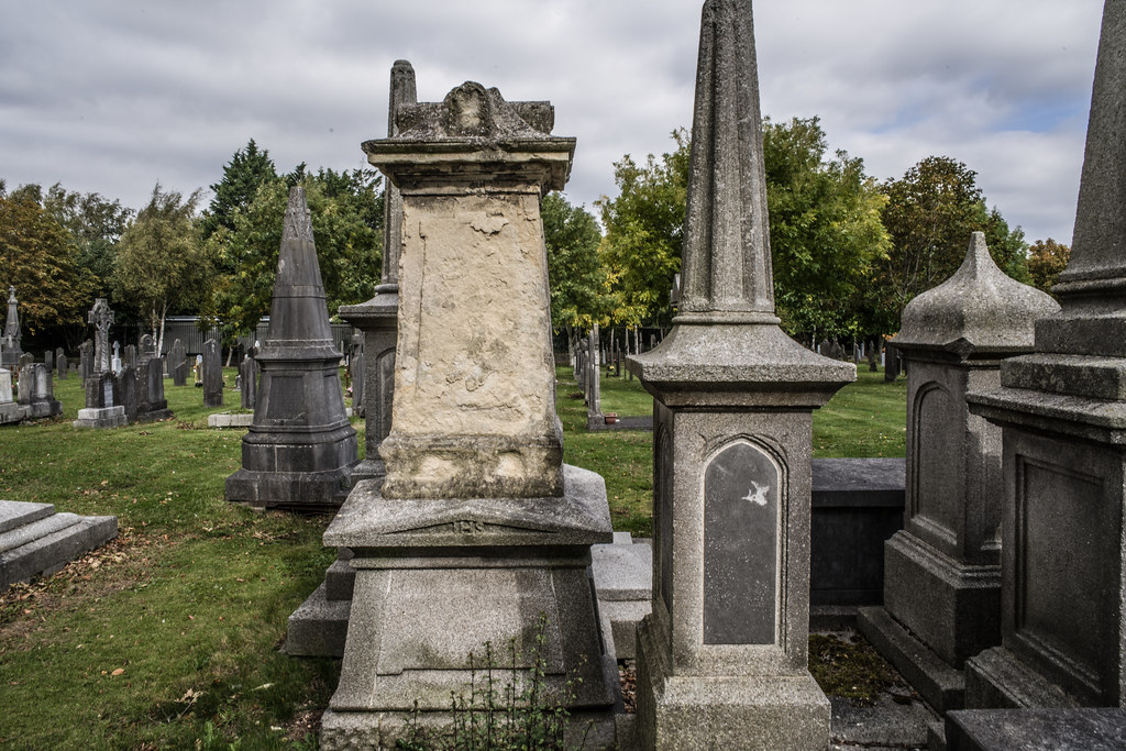 SEPTEMBER 2018 VISIT TO GLASNEVIN CEMETERY [ I USED A BATIS 25mm LENS AND I EXPERIMENTED WITH CAPTURE ONE]-144776