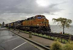 Third day of rain (Tony Tomlin) Tags: whiterockbc britishcolumbia canada bnsf train railroad